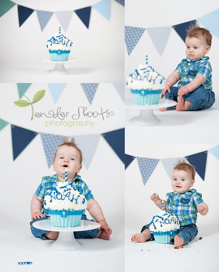 1st Birthday cake smash by Tender Shoots Photography