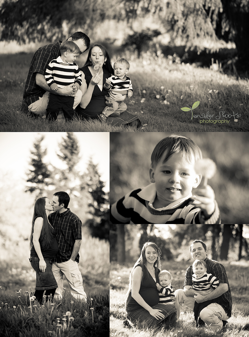 Cloverdale family photographer