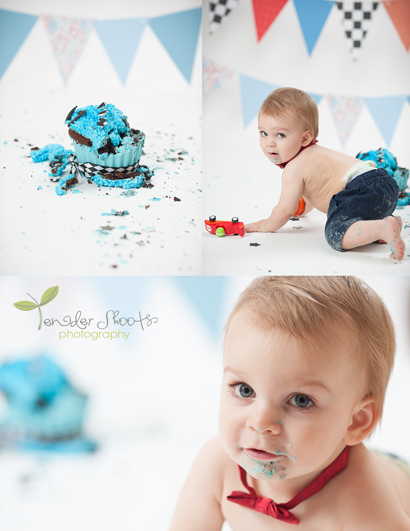 Tender Shoots cake smash