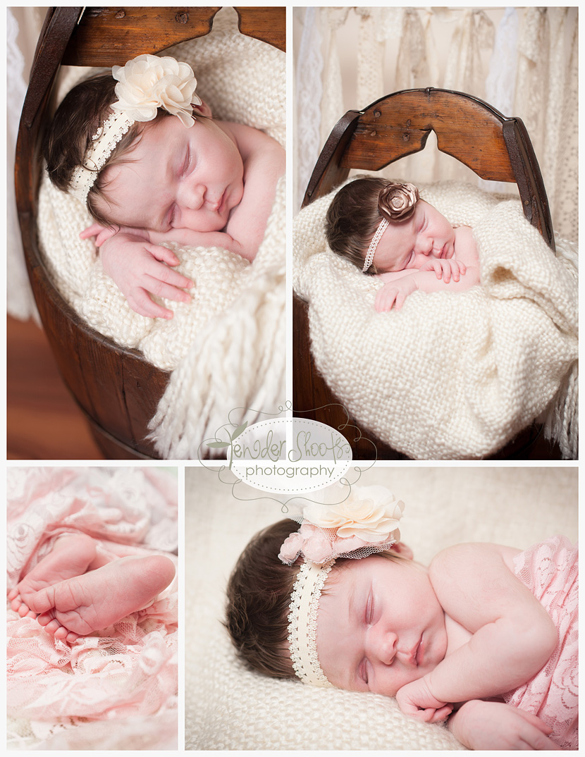 Tender Shoots Newborn Photography, Surrey BC