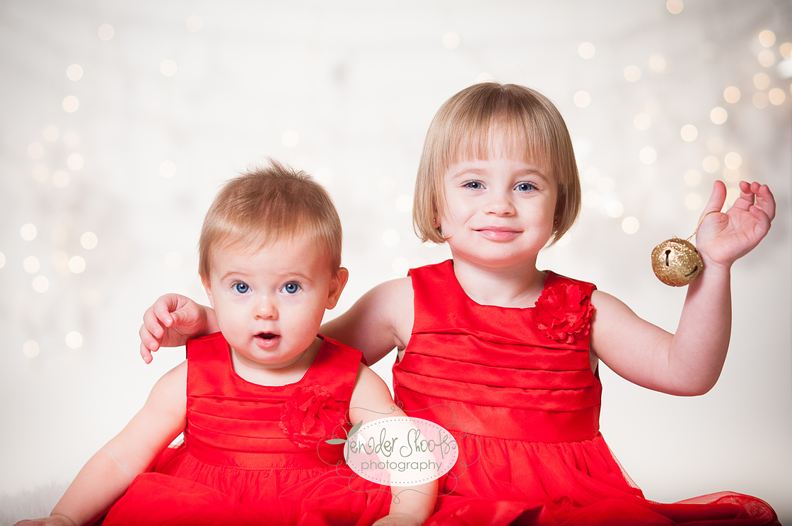 Tender Shoots Christmas Mini Sessions