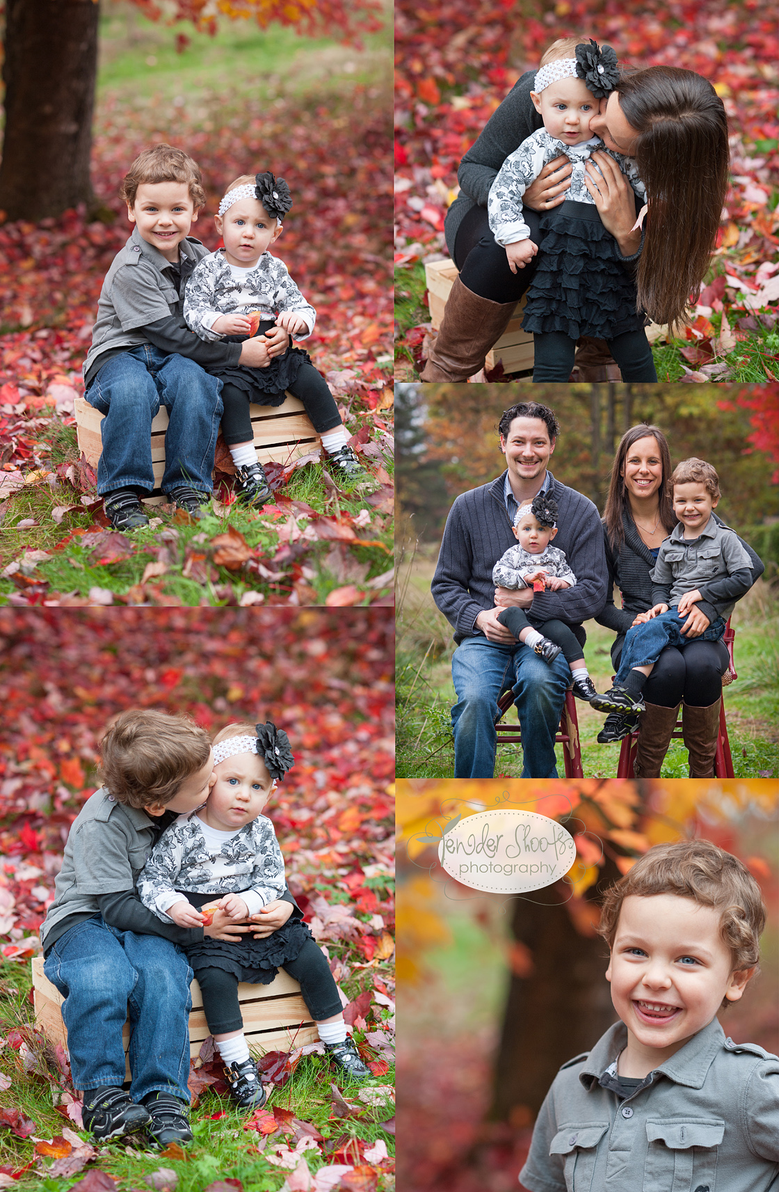 Tender Shoots Fall Photography Sessions