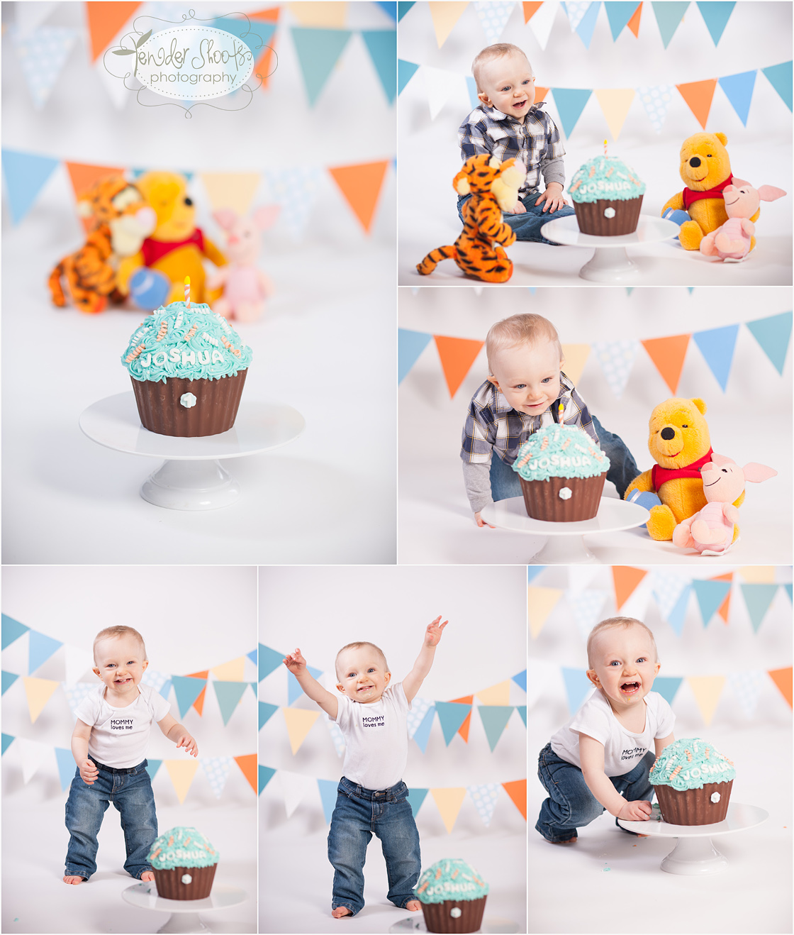 Tender Shoots Photography Cake Smash